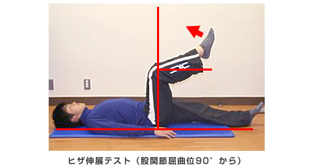 ヒザ伸展テスト(股関節屈曲位90度)