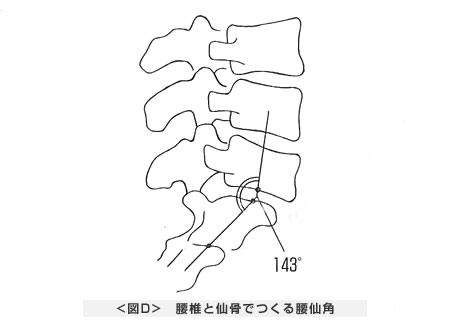 腰椎と仙骨でつくる腰仙角