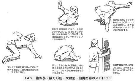 腹斜筋・腰方形筋・大殿筋・仙腸関節のストレッチ
