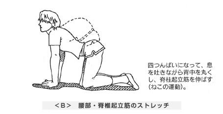 腰部・脊椎起立筋のストレッチ